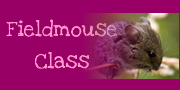 https://sites.google.com/a/parksideprimary.org/fieldmouse